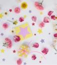 Kort rosa stjerne